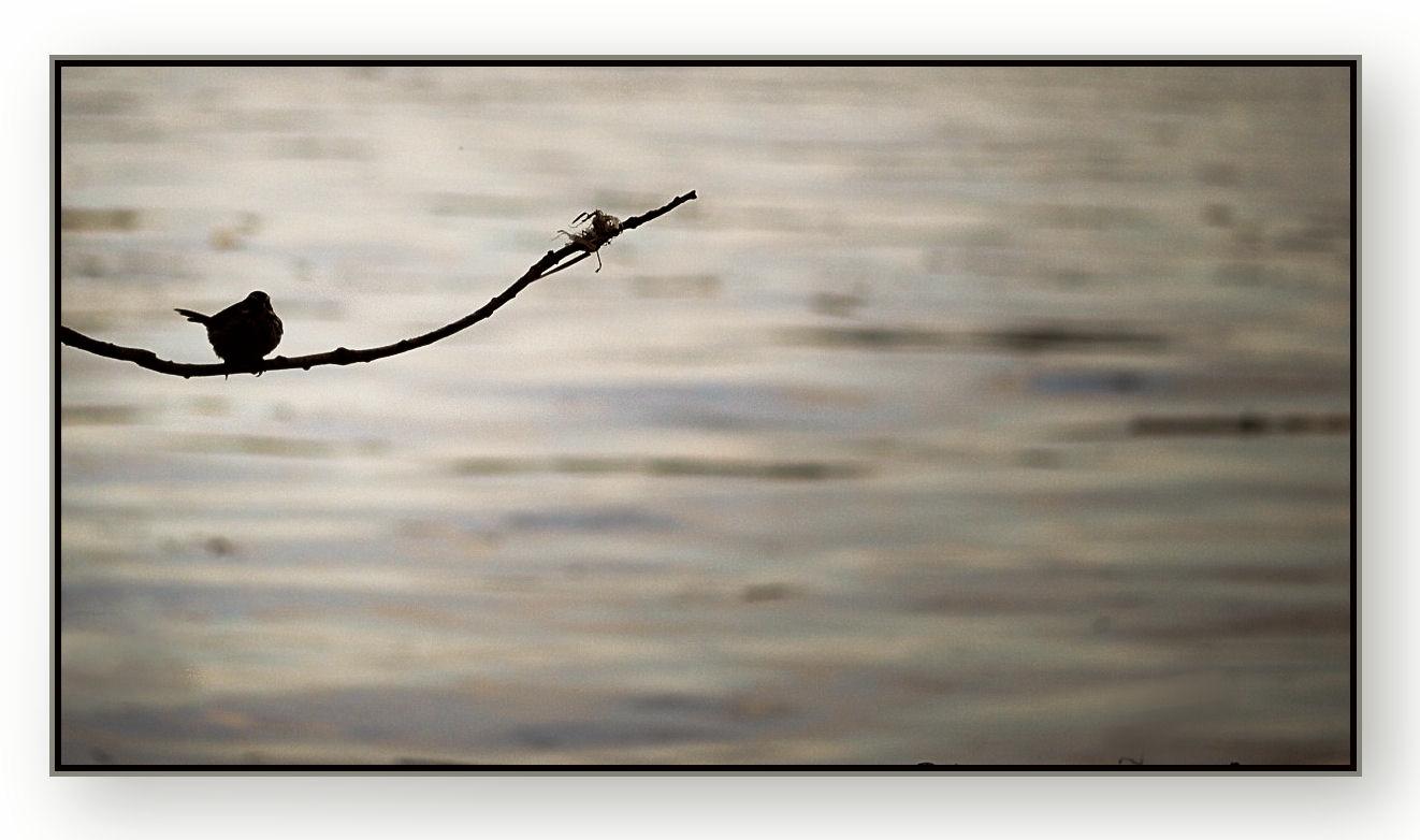 Warum minimalismus nicht nur was mit gegenst nden zu tun for Was ist minimalismus